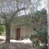 Lotto 3 - 869/11 + 150/12 R.G.E. - Comune di Giurdignano